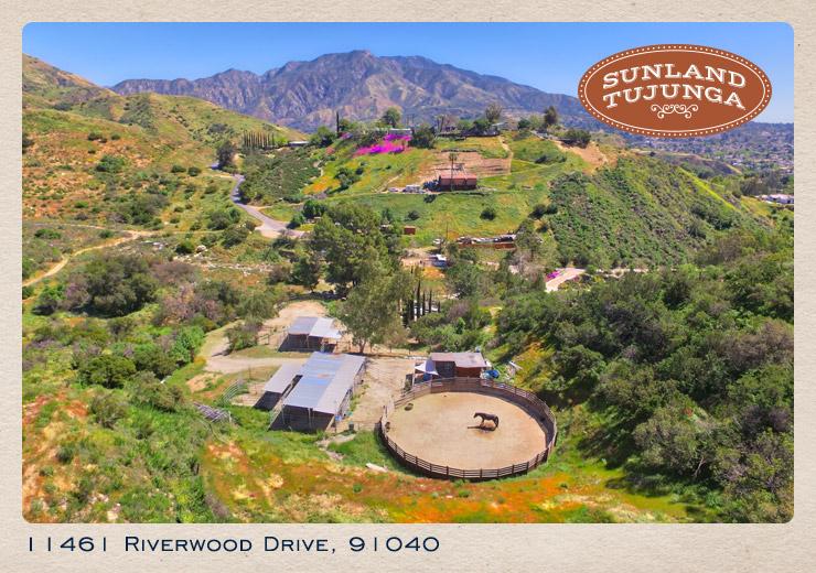 11461 Riverwood drive